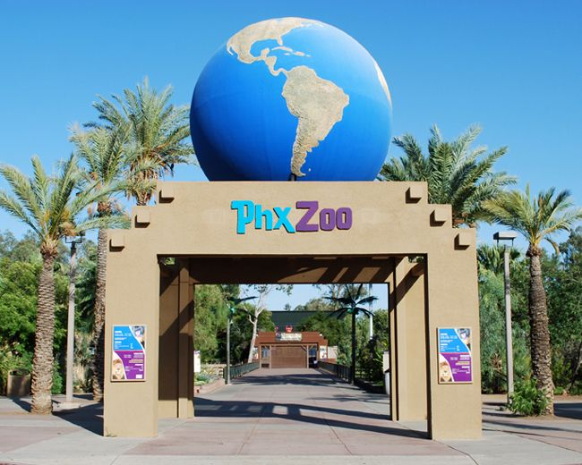 Animal lovers of all ages will love Phoenix Zoo in Phoenix, a local zoo filled with a number of must-see animals. No need to splurge on a baby sitter? tots will be right at home at this mobzik.tkx Zoo provides easy access to an adjacent lot. Lions and tigers and bears- oh my! Come see all this zoo has to mobzik.tkon: North Galvin Parkway, Phoenix, , AZ.